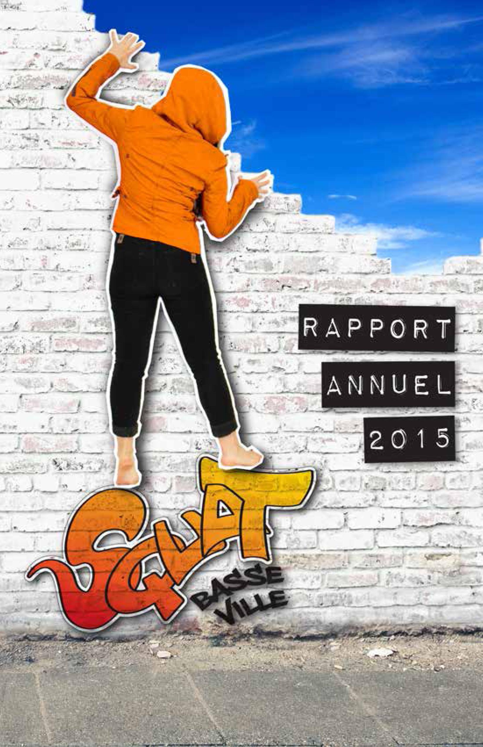 Rapportannuel2015